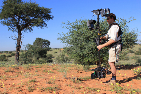 Filming Meerkats - Photo by Sophie Lanfear