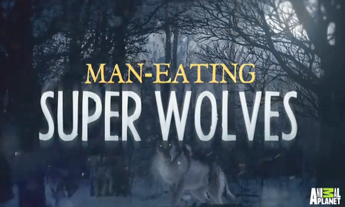 Man-Eating Super Wolves by Animal Planet