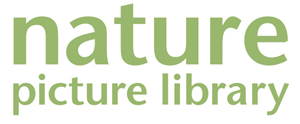 Nature Picture Library