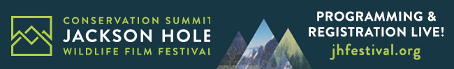 Jackson Hole Wildlife Film Festival 2017 - Call for Entry Open!