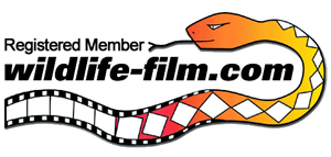 Wildlife-film.com Logo