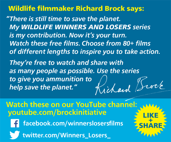 Wildlife Winners and Losers - Brock Initiative