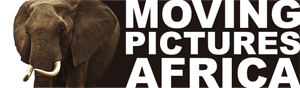 Moving Pictures Africa