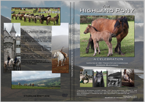 The Highland Pony: A Celebration