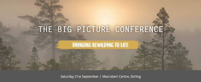 The Big Picture Conference