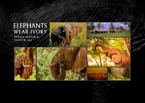 Elephants Wear Ivory