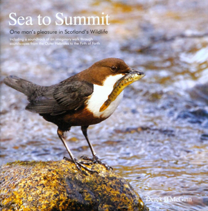 Sea to Summit: One Man's Pleasure in Scotland's Wildlife